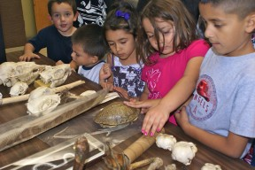 Kids get an up close and have a hands on lesson about animal skulls, skins and bones. L to R - Evan Lorigo, Jayden Rodriguez, Jasmine Crisobal, Rubi Yepez and Devin Yepez