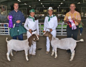 Pictured from L to R - Apprentice Judge Robert Bloyed, Flach, Senn and Fresno Fair Judge Sue Hobby