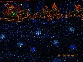 christmastreelane