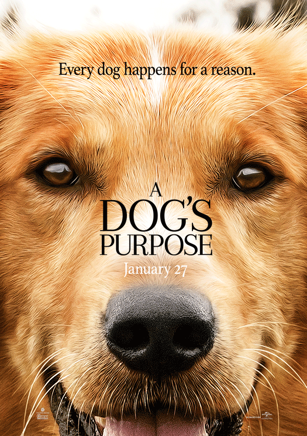 A Dog S Purpose Out On Dvd