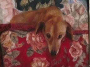 napoli art dog