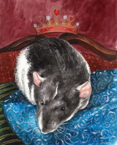 artwork by Drusilla Kehl Illustrated Rat