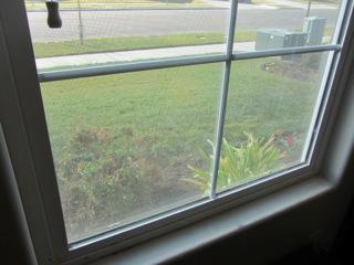 a clean window