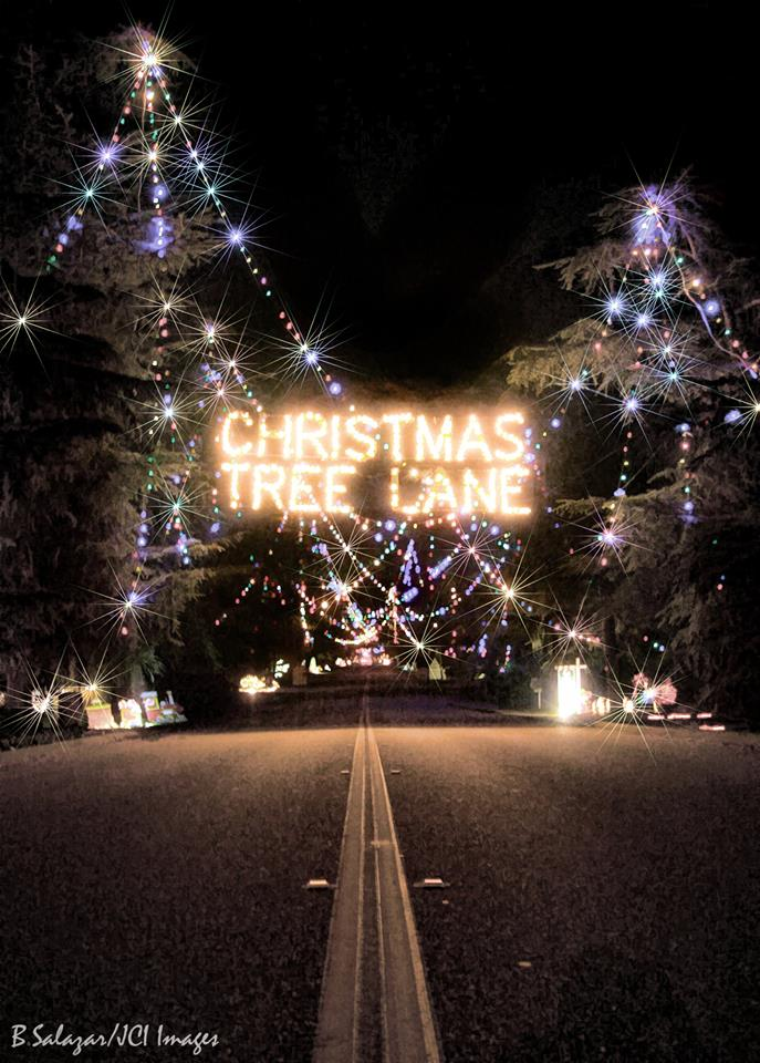 Christmas Tree Lane.Fresno S Christmas Tree Lane Enjoys Its 92nd Year Kings
