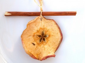 dried apple slice with cinnamon stick