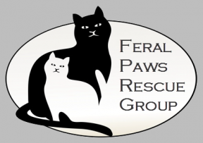 feral paws logo