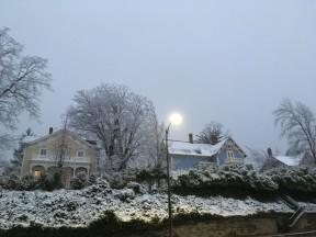 snow arf